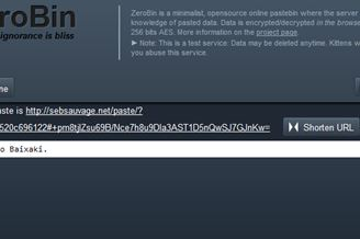 ZeroBin Download to Web Grátis