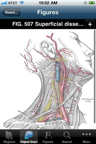 Gray´s Anatomy 2011 - Imagem 2 do software