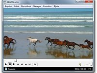 Imagem 1 do Media Player Classic - Home Cinema