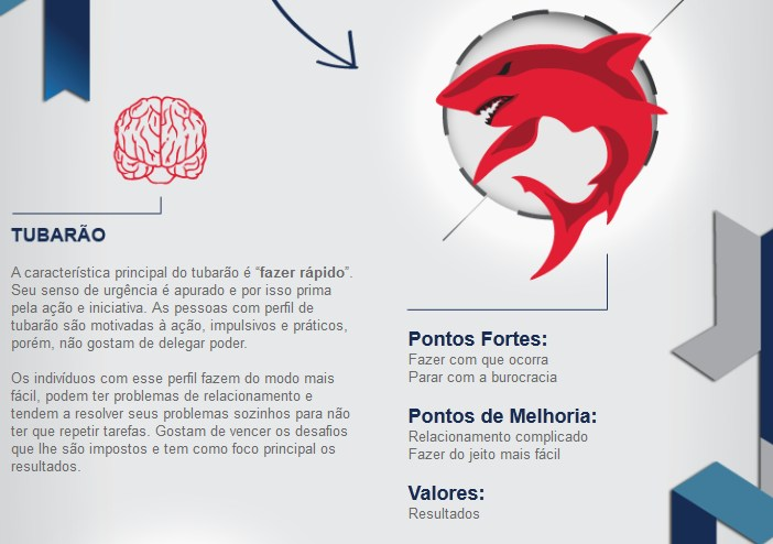 Teste De Perfil Comportamental E Cerebral Do Ibc Download