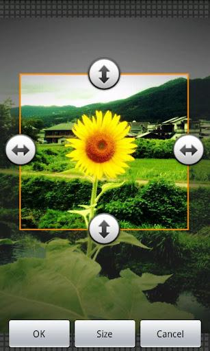 Reduce Photo Size - Imagem 2 do software