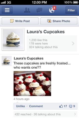 Gerenciador de Páginas do Facebook - Imagem 1 do software