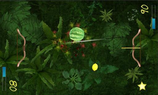 Two Player Fruit Shoot - Imagem 1 do software