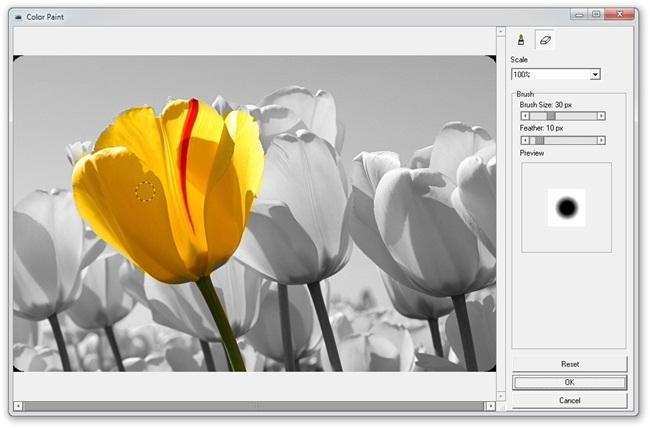 Toolwiz Pretty Photo - Imagem 2 do software