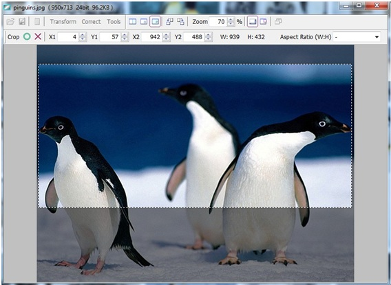 Vieas - Imagem 1 do software