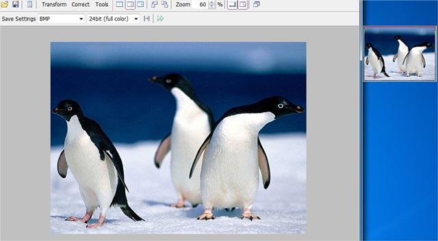 Vieas - Imagem 2 do software