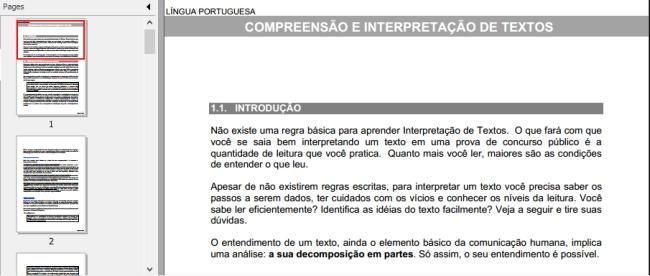Apostila IBGE 2013 - Imagem 1 do software