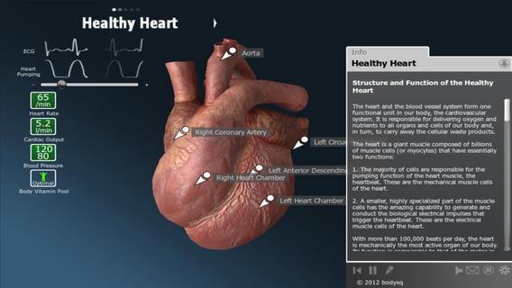 bodyxq heart - Imagem 1 do software