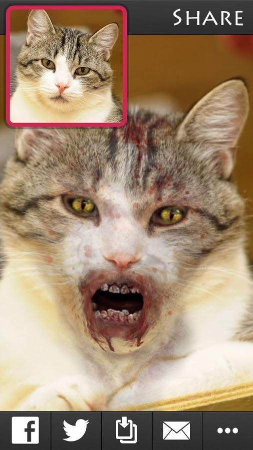 ZombieBooth 2 - Imagem 2 do software
