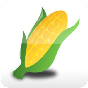 show do milho grande 6.0