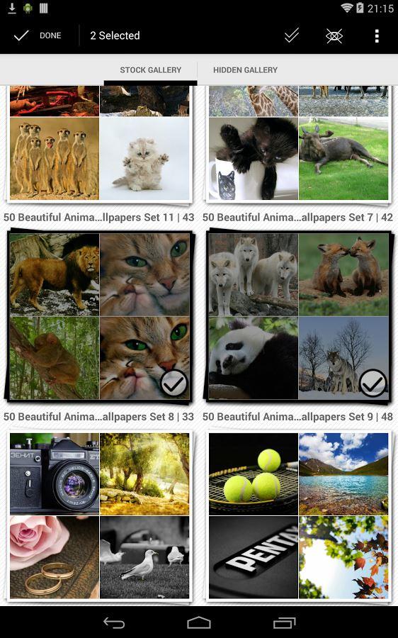 Gallery Plus - Hide Pictures - Imagem 2 do software