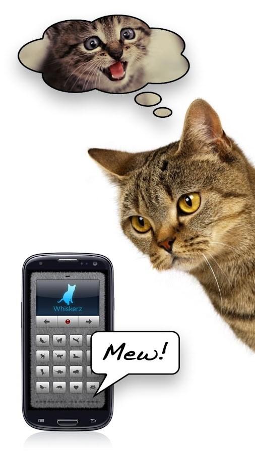Tradutor Humano-Gato - Imagem 1 do software