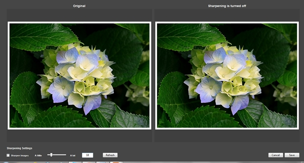 BlogStomp - Imagem 1 do software
