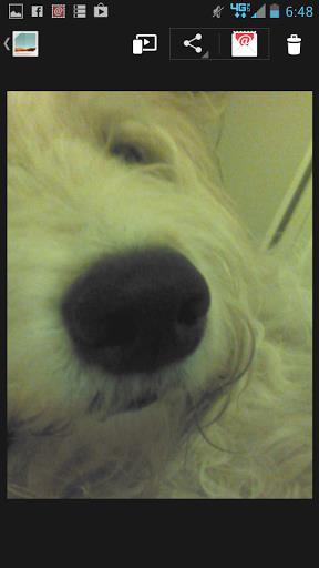 Selfies Camera App - Imagem 2 do software