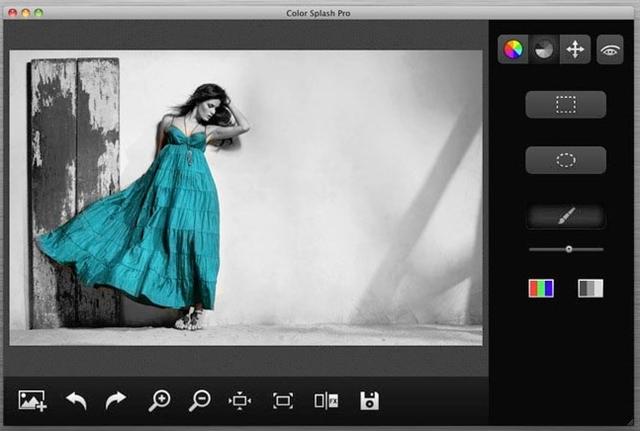 Color Splash Pro - Imagem 1 do software