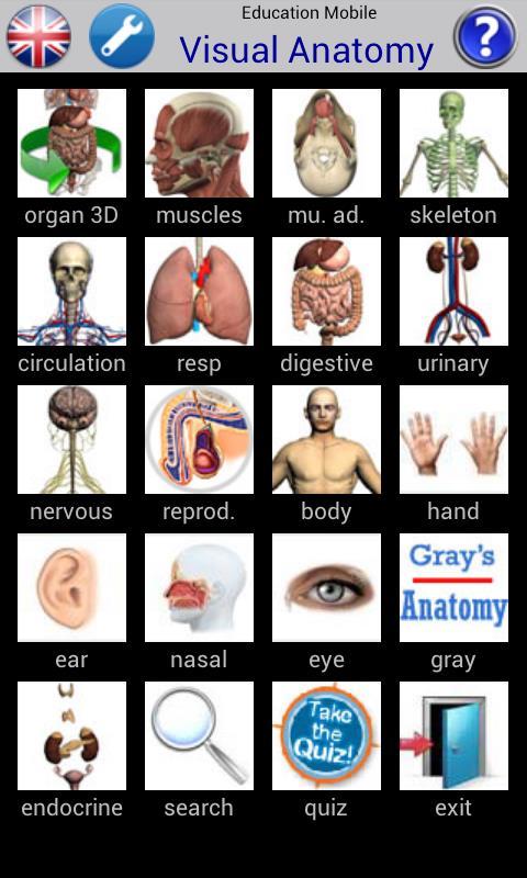 Visual Anatomy - Imagem 1 do software