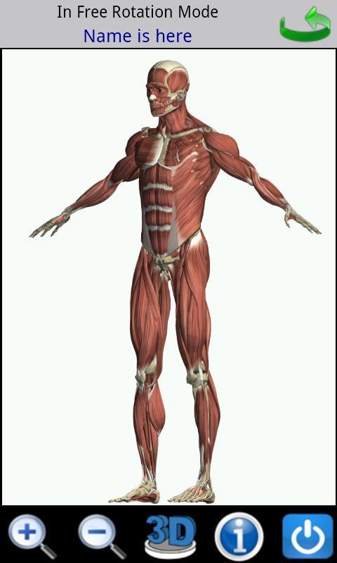 Visual Anatomy - Imagem 2 do software