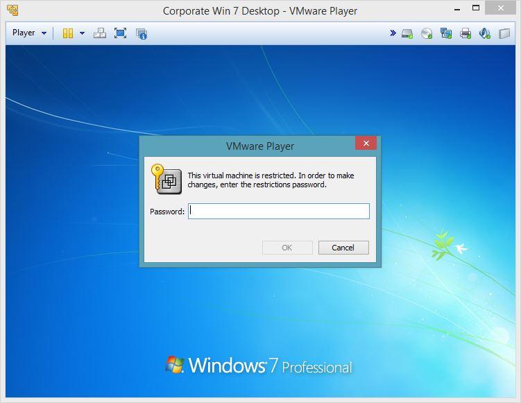 VMware Player - Imagem 2 do software