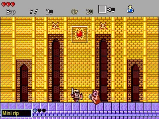 Wonder Boy in Monster Land Remake.