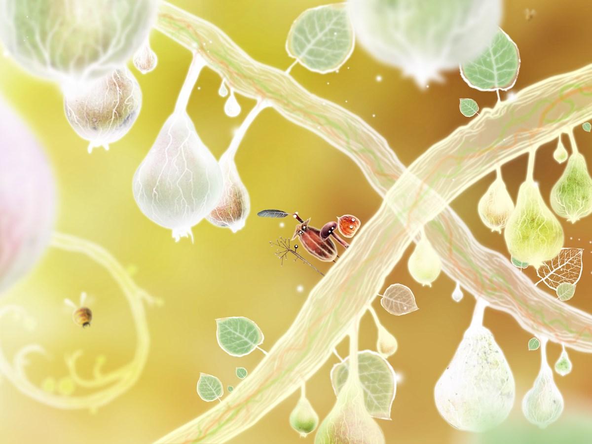 Botanicula - Imagem 1 do software