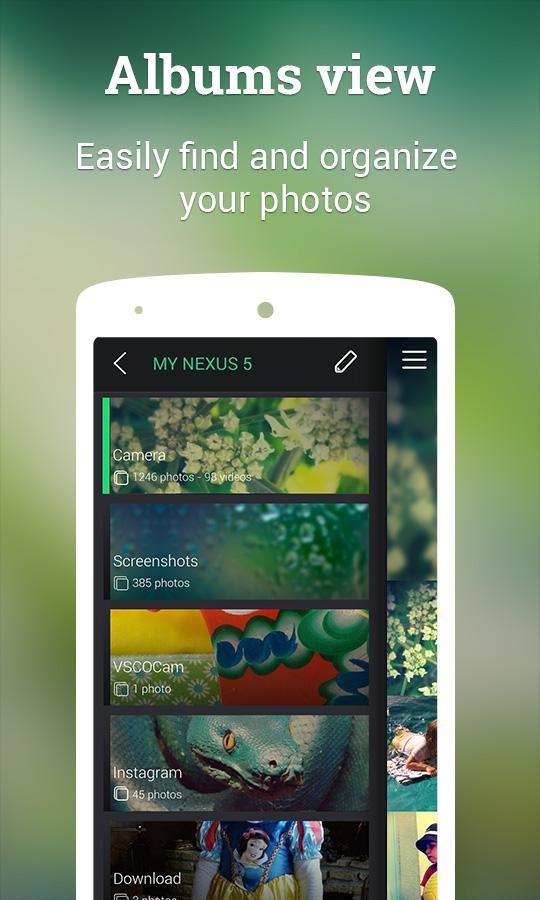 Piktures - Photo Album Gallery - Imagem 2 do software