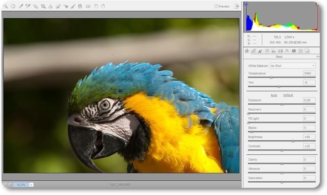 Adobe Camera Raw - Imagem 1 do software