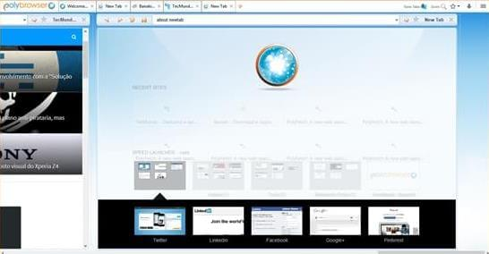 PolyBrowser - Imagem 2 do software