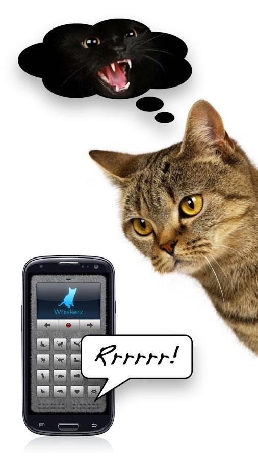 Tradutor Humano-Gato (Gratuito) - Imagem 2 do software