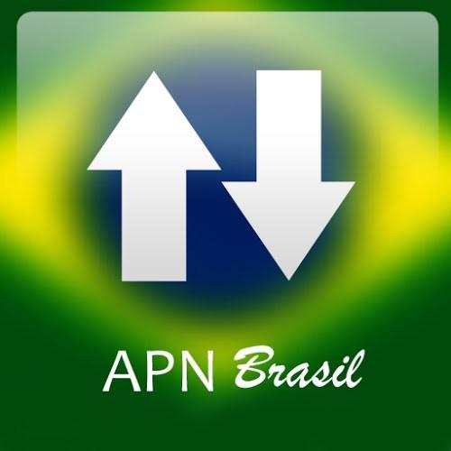 Logo APN Brasil ícone