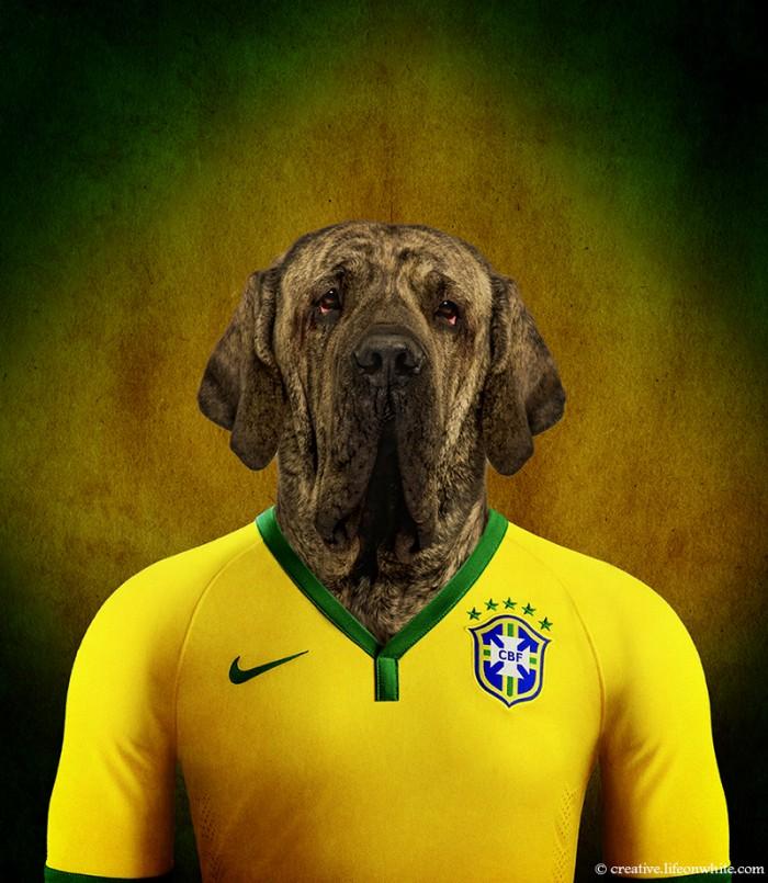 Veja adorável time de cães vestindo as camisas de futebol de seus ... 0523ae48bef8e