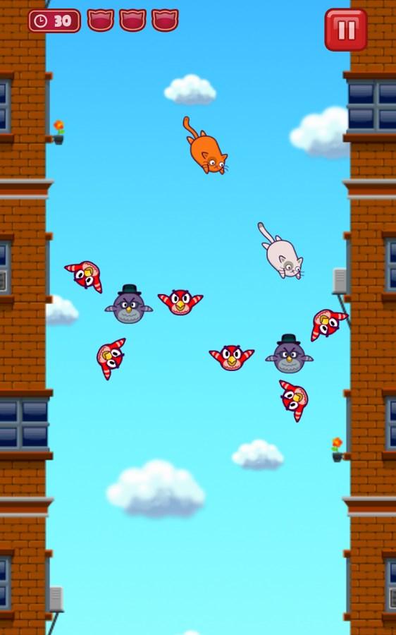 Cats Vs Birds - Imagem 2 do software