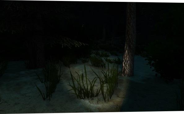Atravessando a floresta