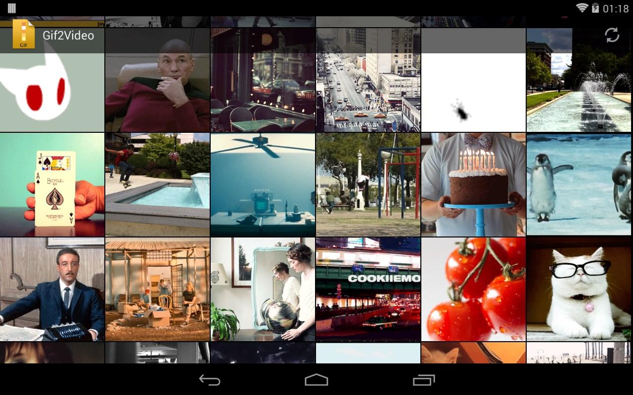 GIF to Video - Whatsapp, LINE - Imagem 1 do software