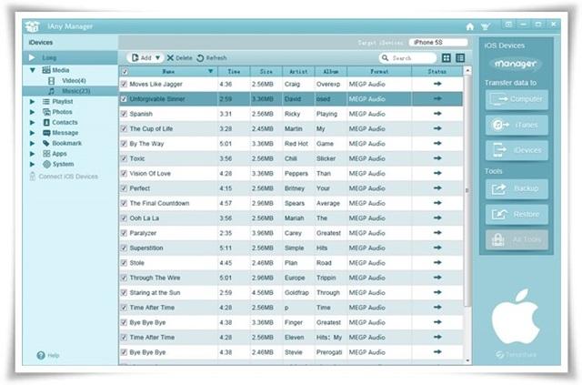 iAny Manager - Imagem 2 do software