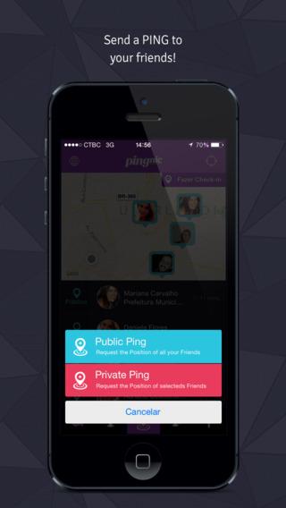 Pingnic - Imagem 2 do software