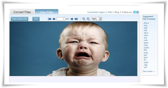 DocsPal - Imagem 3 do software