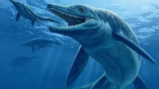 Os 10 Dinossauros Em Que Voc No Gostaria De Tropear