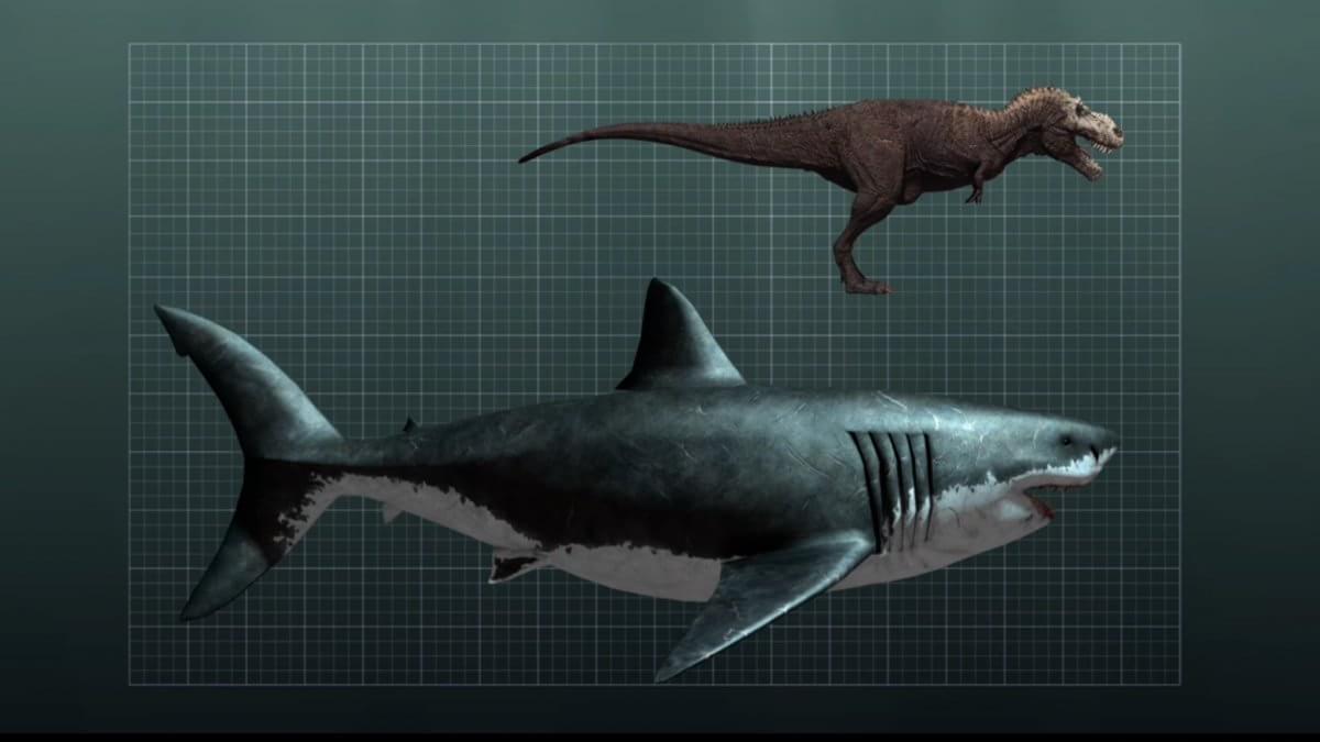Bigger Than Megalodon Shark Toy : Os dinossauros em que você não gostaria de tropeçar
