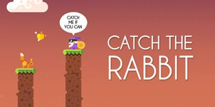 Catch The Rabbit