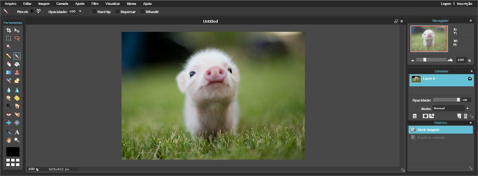 Pixlr - Imagem 1 do software
