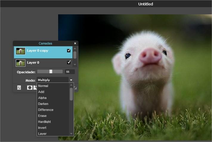 Pixlr - Imagem 2 do software