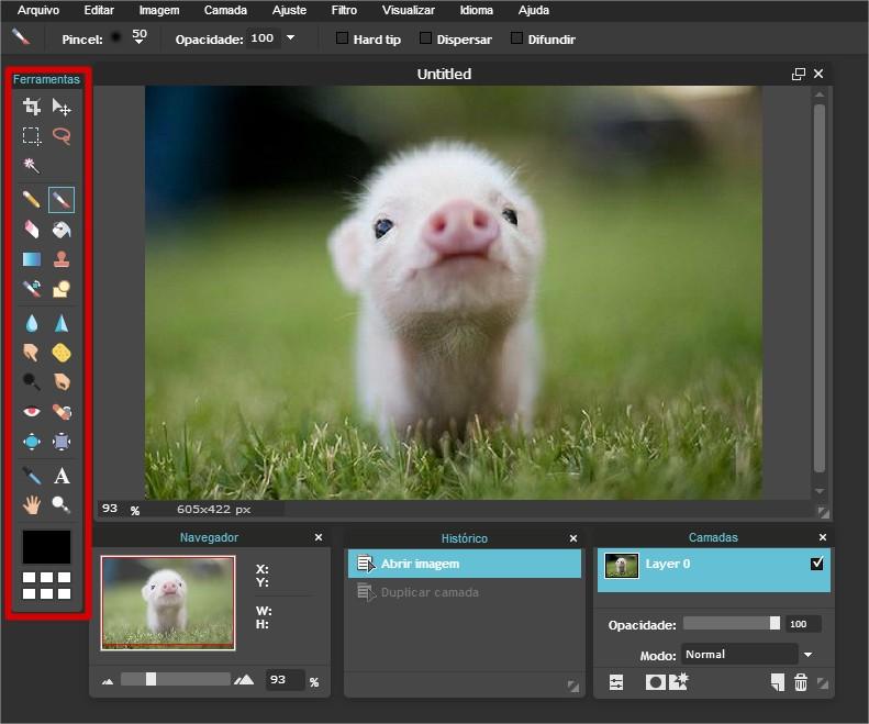 Pixlr - Imagem 5 do software