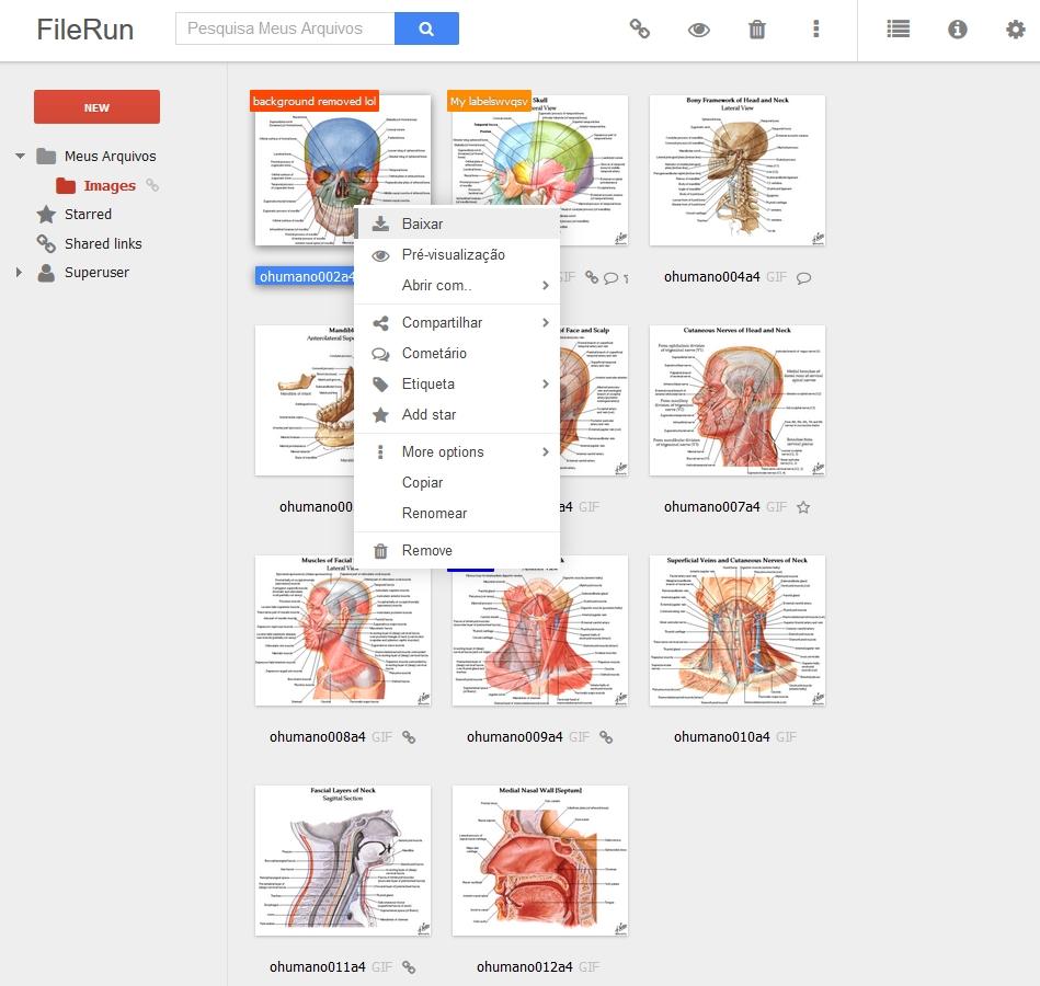 FileRun - Imagem 1 do software