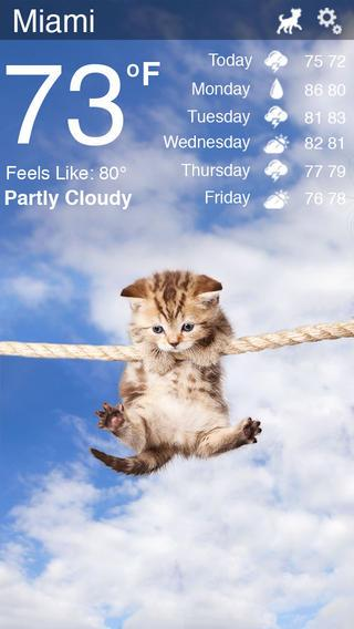 Weather Kitty - Imagem 1 do software