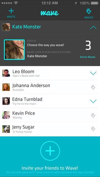 Wave - Private Location App - Imagem 3 do software