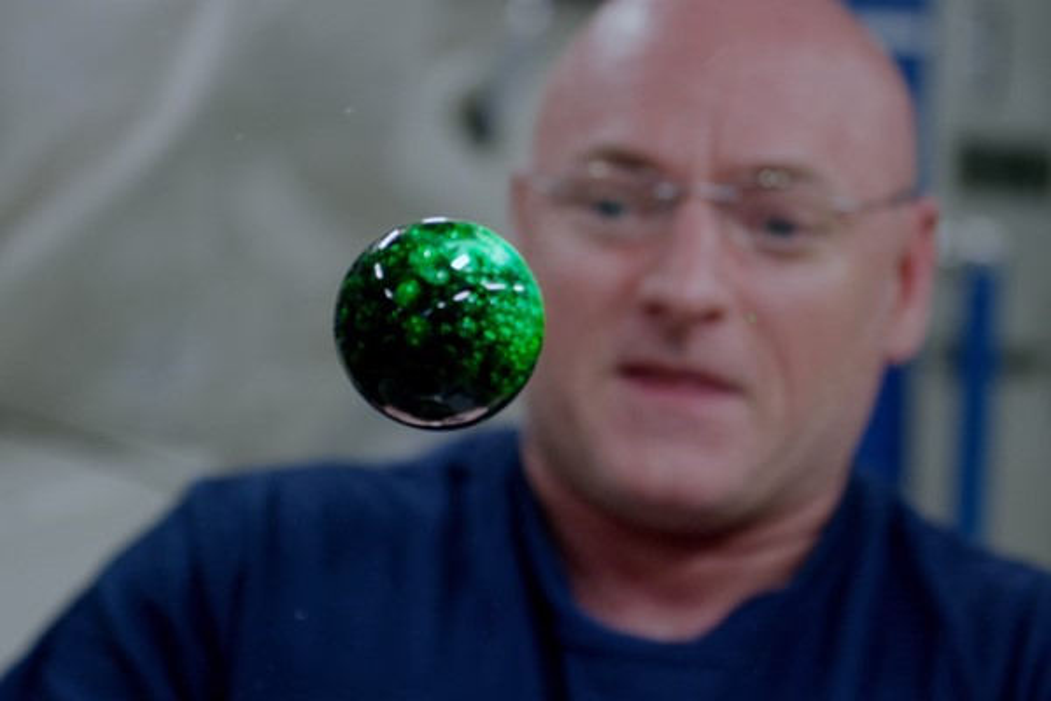 Ovo alienígena? Astronauta faz experiência na Estação Espacial; veja em 4K