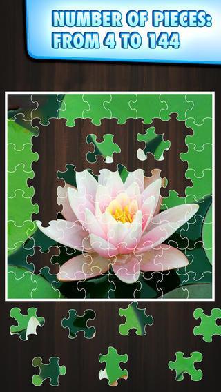 Quebra-Cabeças Jigty - Imagem 2 do software