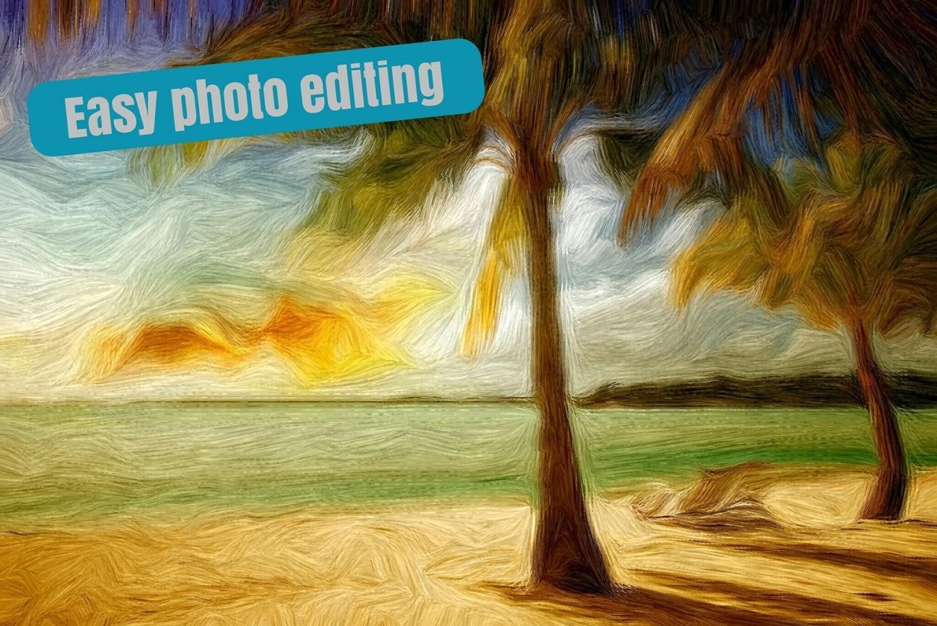 Bonfire Photo Editor - Imagem 1 do software