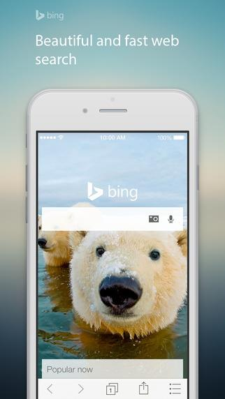Bing Search - Imagem 1 do software
