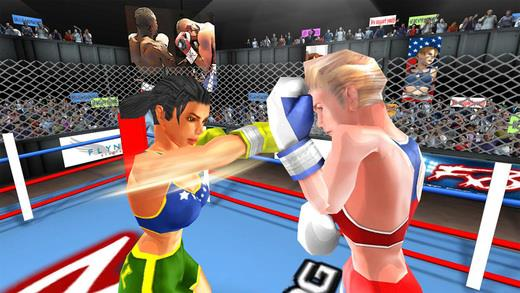 Woman Fists For Fighting (WFx3 ) - Imagem 1 do software
